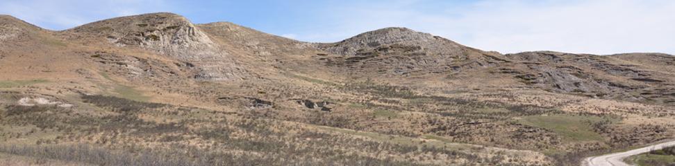 Bowbend Trail