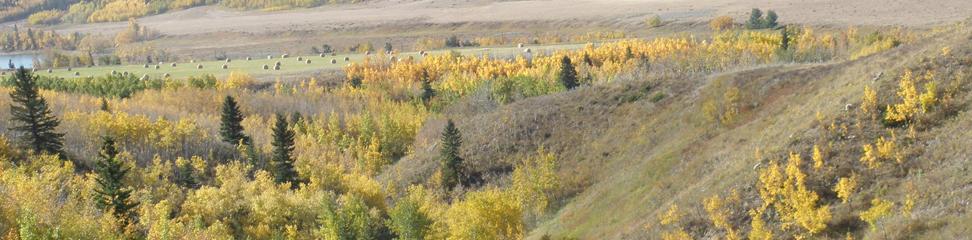 McPherson Trail