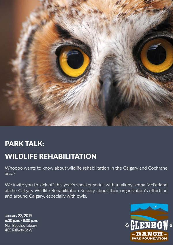 Event: Park Talk Wildlife Rehabilitation
