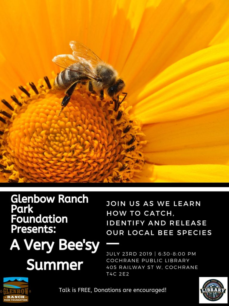 Event: A Very Bee'zy Summer