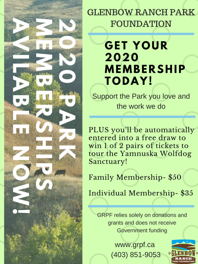 News: Get Your 2020 Membership Today!
